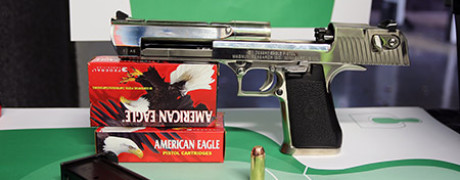 Desert Eagle Review 1